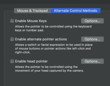 Captura de pantalla de los ajustes de accesibilidad de Mac OS Catalina