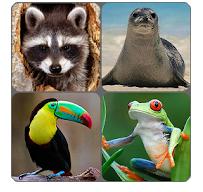 Logo de la aplicación de juego de memoria de animales
